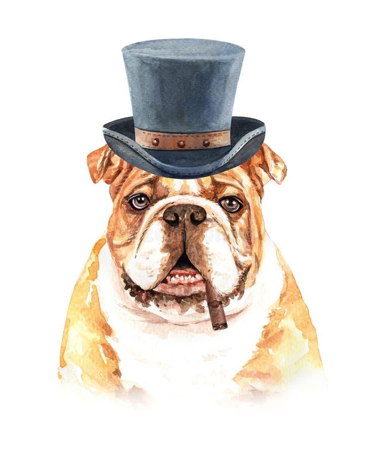 Bulldog del ritratto di un cane Illustrazione disegnata a mano dell'acquerello illustrazione di stock