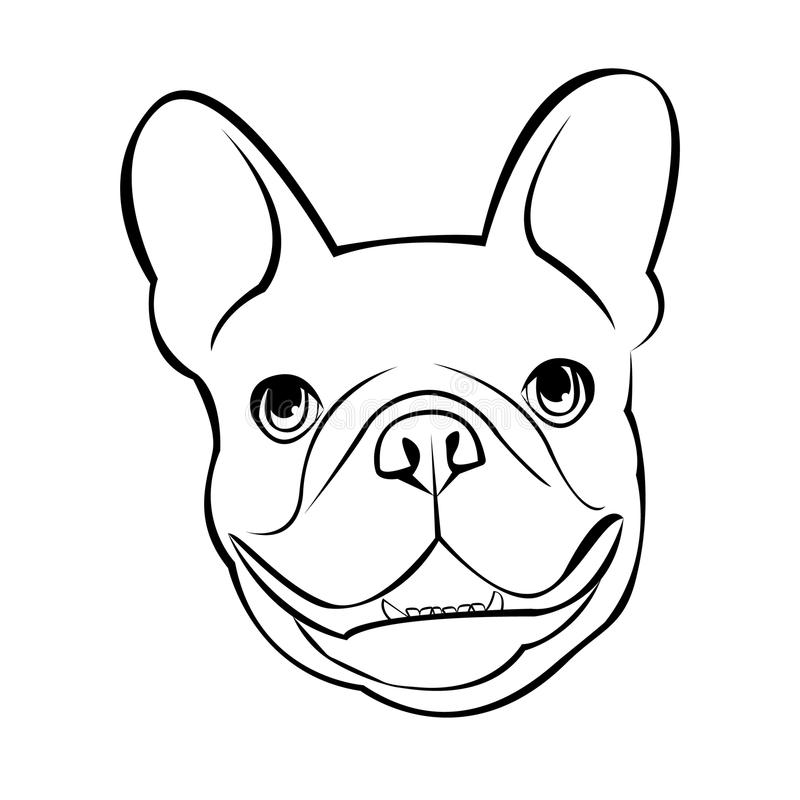 Bulldog dog animal french vector illustration pet breed cute drawing vector illustration