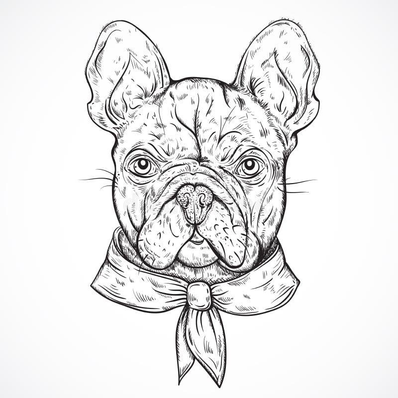 Bulldog francese Illustrazione disegnata a mano in bianco e nero d'annata di vettore illustrazione di stock