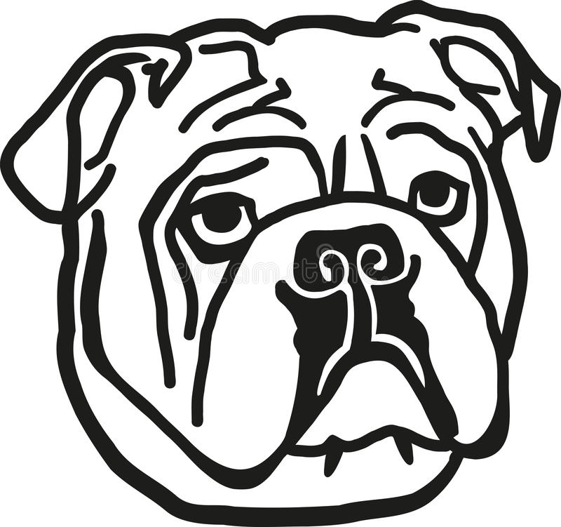 Bulldog head. With outline style royalty free illustration