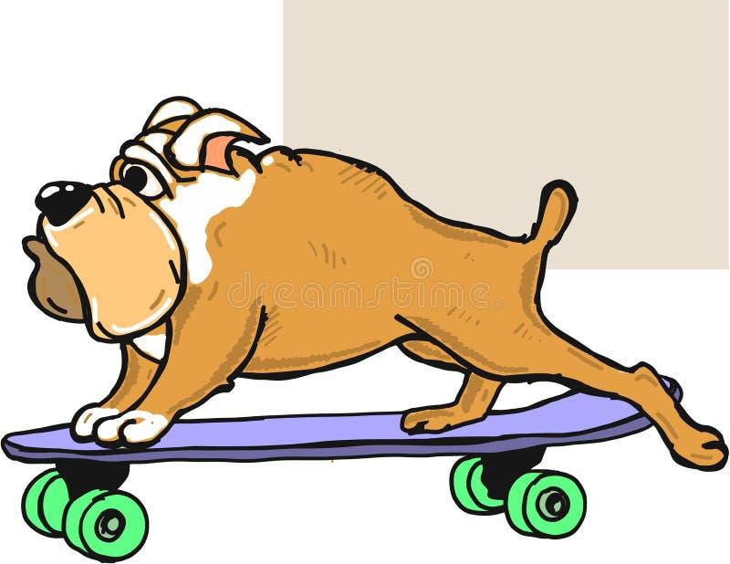 bulldog on skateboard vector illustration clip art image stock rh dreamstime com