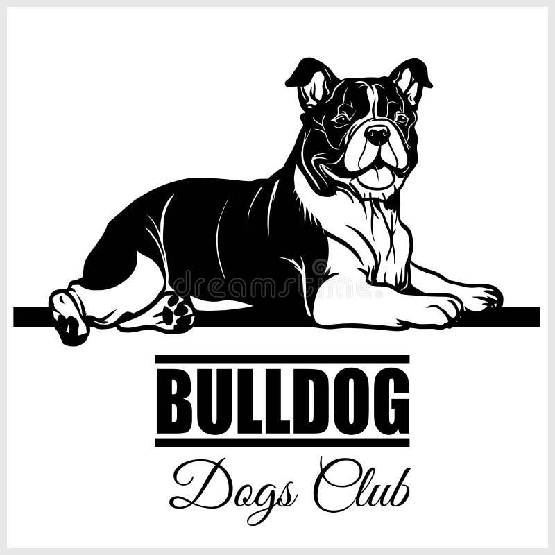 Bulldog - vector illustration for t-shirt, logo and template badges stock illustration