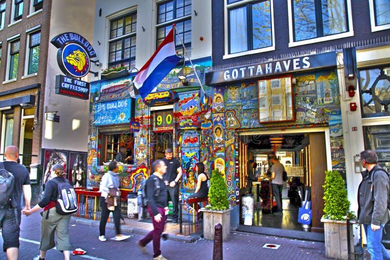 Bulldogge coffeeshop in Amsterdam, die Niederlande lizenzfreie stockbilder