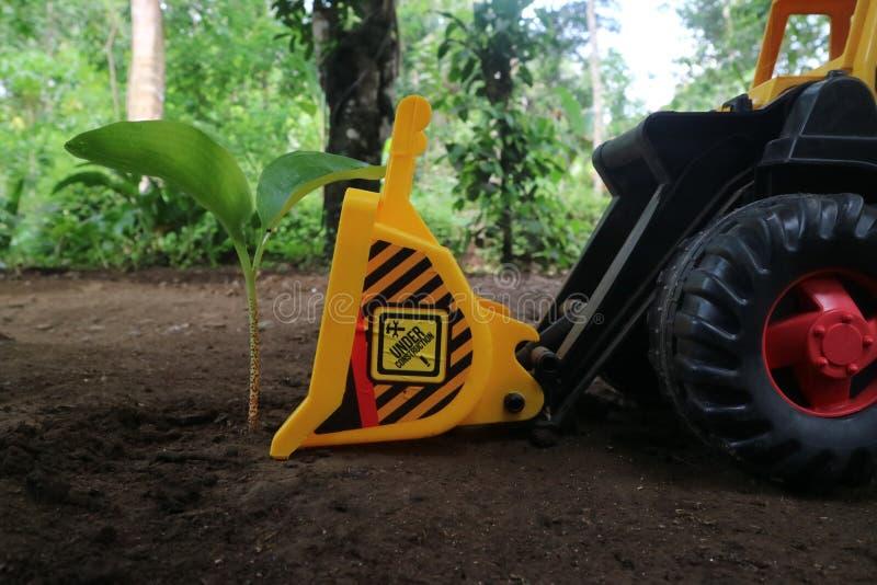 Bulldozer e deforestazione fotografia stock