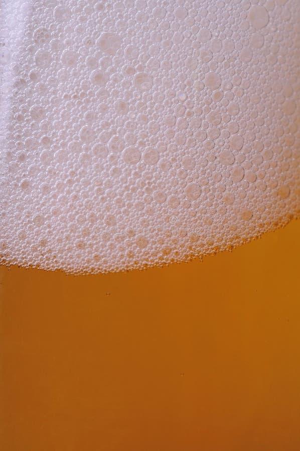 bulle de bière photos libres de droits