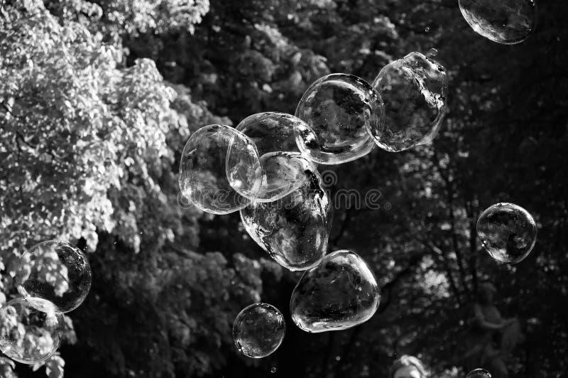 Bulles d'arc-en-ciel du ventilateur de bulle en parc image libre de droits