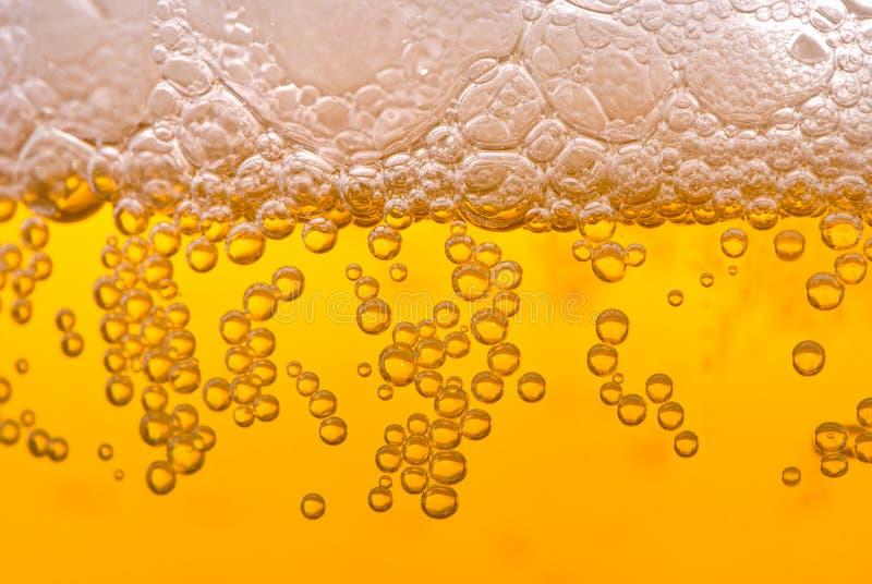 Bulles de bière photographie stock