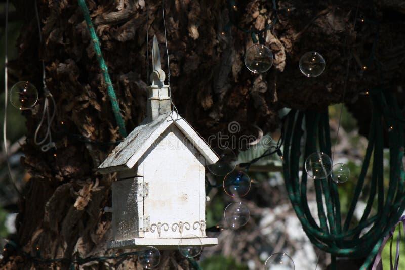 Bulles de maison et de savon d'oiseau photos libres de droits