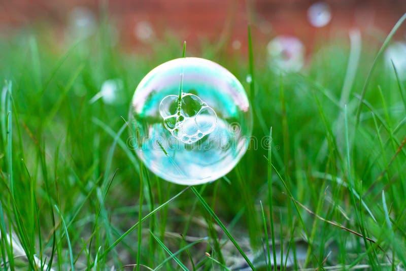 Bulles de savon sur l'herbe verte de ressort avec le beau fond brouill photo stock