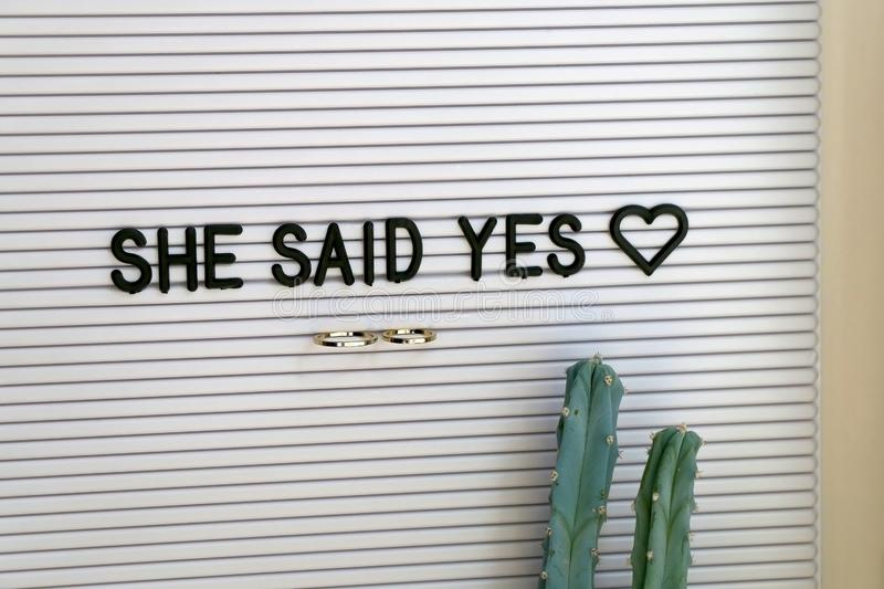 Wedding Rings. Bulletin board with wedding rings and love message, and cactus on a shelf. Wedding concept royalty free stock image