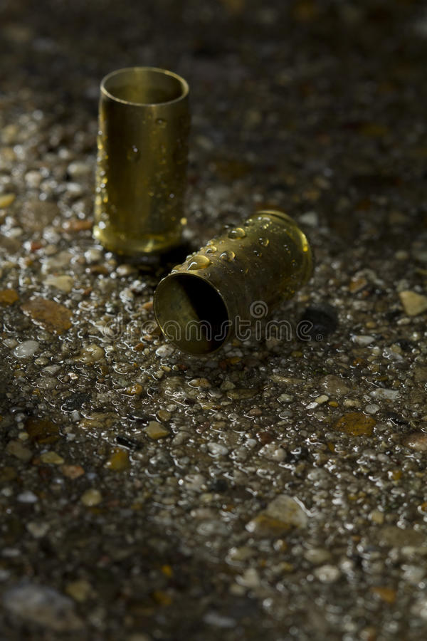 Free Bullets On The Ground On A Rainy Day Royalty Free Stock Photography - 30433127