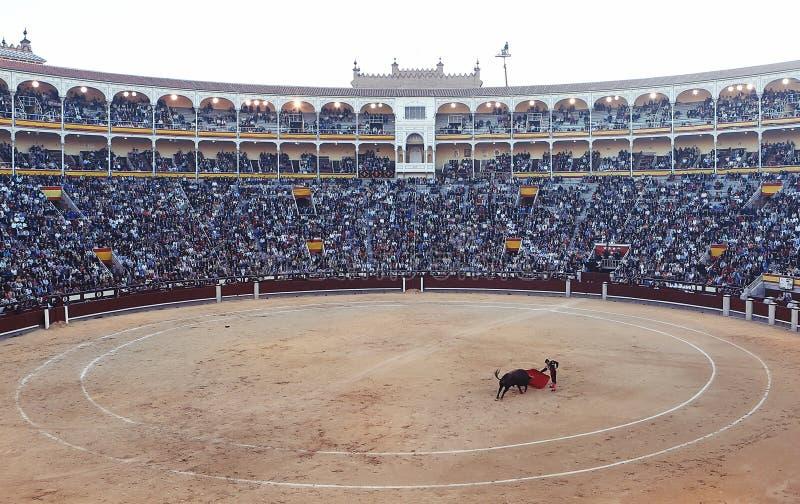 Bullfight arena stock photos