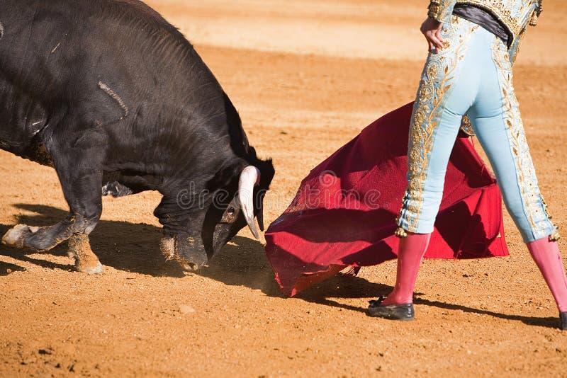 Bullfighter с накидкой в бое быков стоковое изображение