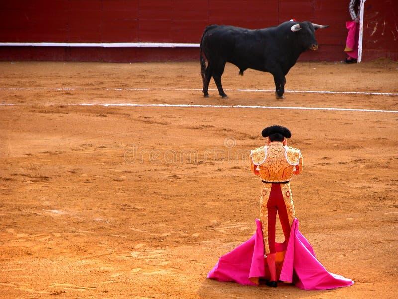 Bullfighter e touro em um suporte isolador fotos de stock royalty free