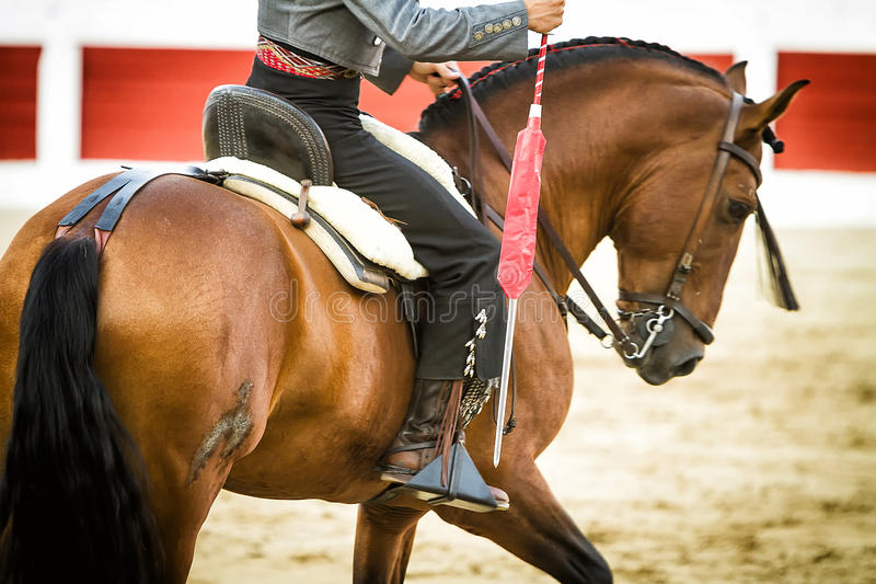Bullfighter on horseback spanish. With sword or called lance of death in the hand, Spain stock photo