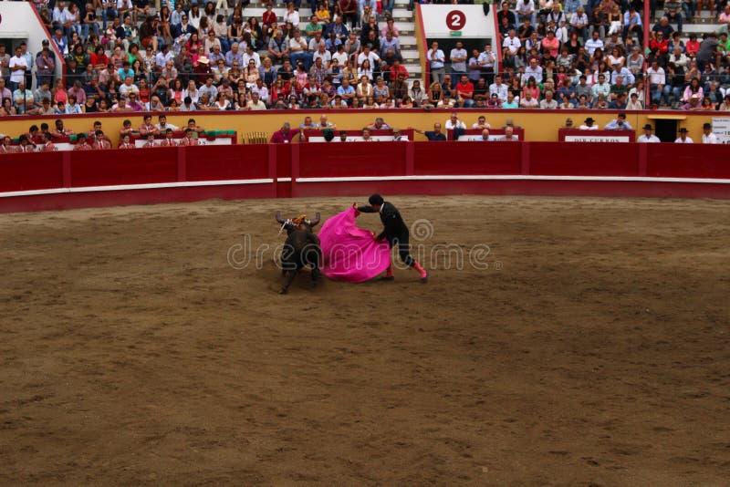 A Bullfighter Sidesteps a Bull stock photo