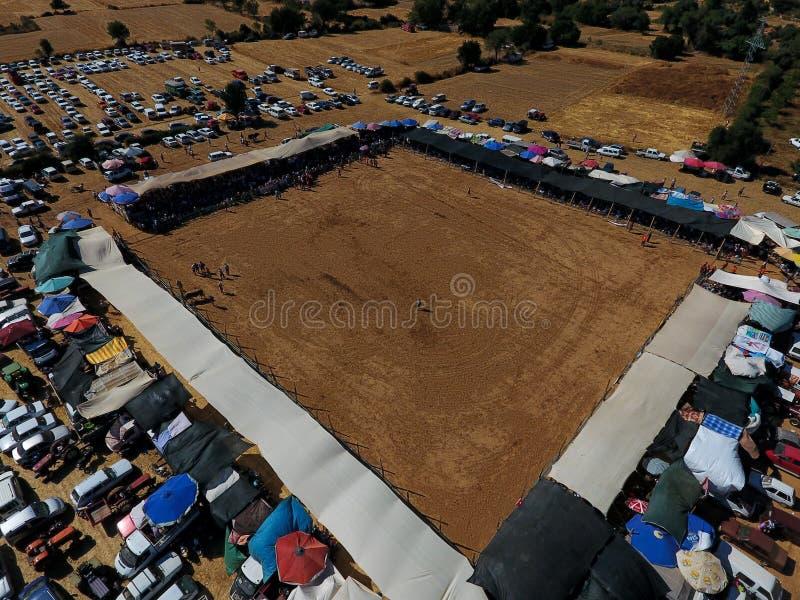 Bullfightingfestival som brottas område fotografering för bildbyråer