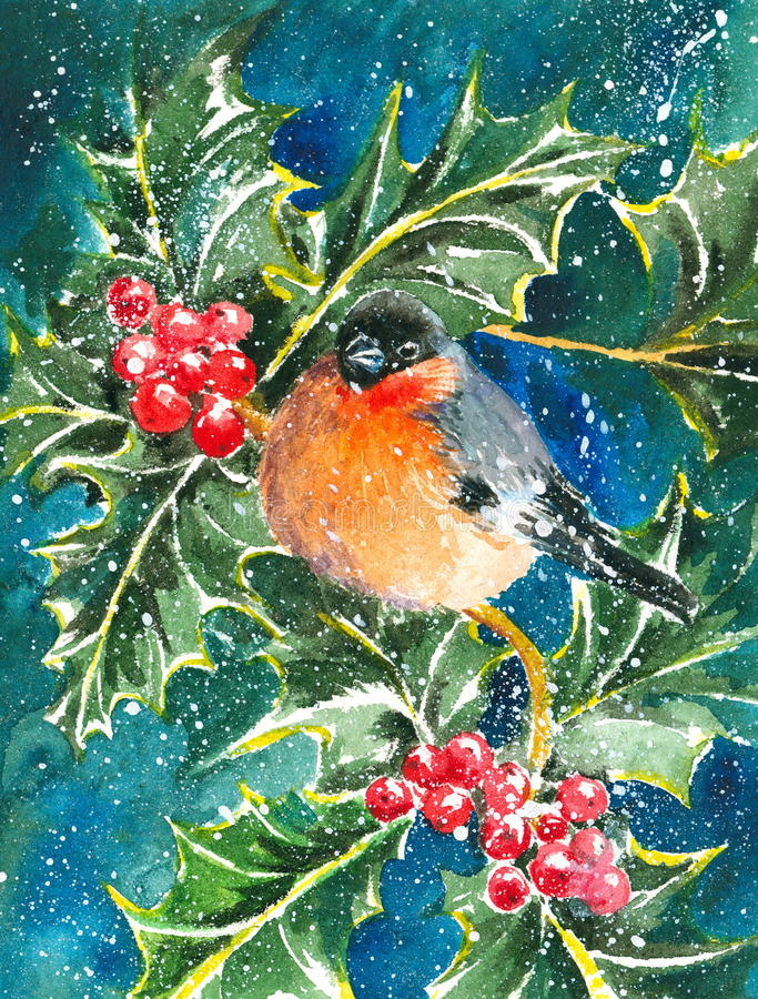 Bullfinch. And holly in snowy day watercolor painted stock illustration