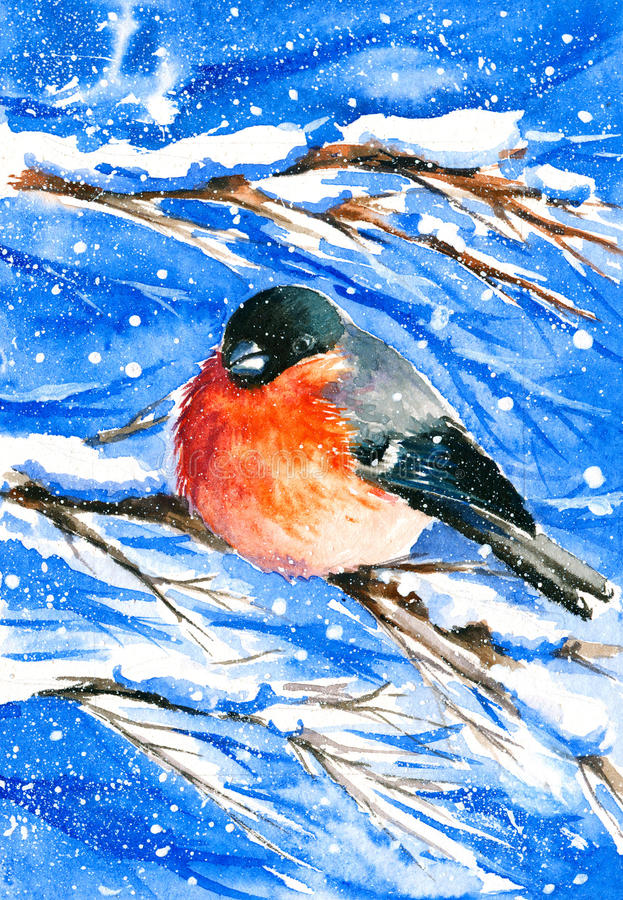 Bullfinch. And holly in a snowy day watercolor painted royalty free illustration