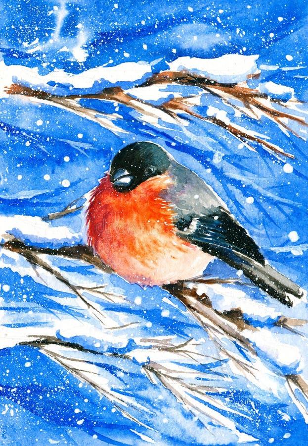 Bullfinch ilustração royalty free
