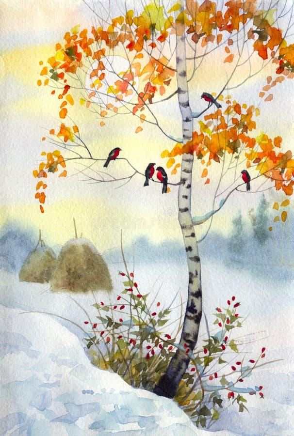 Download Bullfinch on the birch stock illustration. Image of birch - 14057555