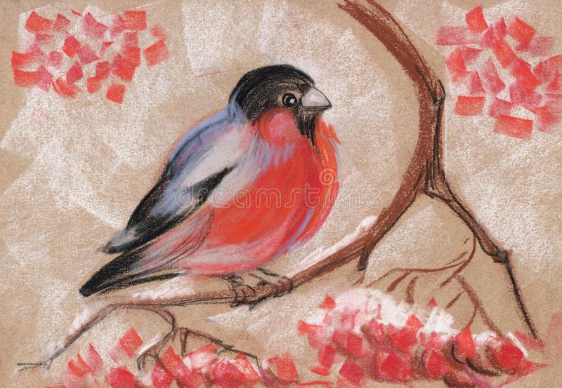 Bullfinch on a branch of mountain ash. Abstract hand drawn with soft pastel illustration royalty free illustration