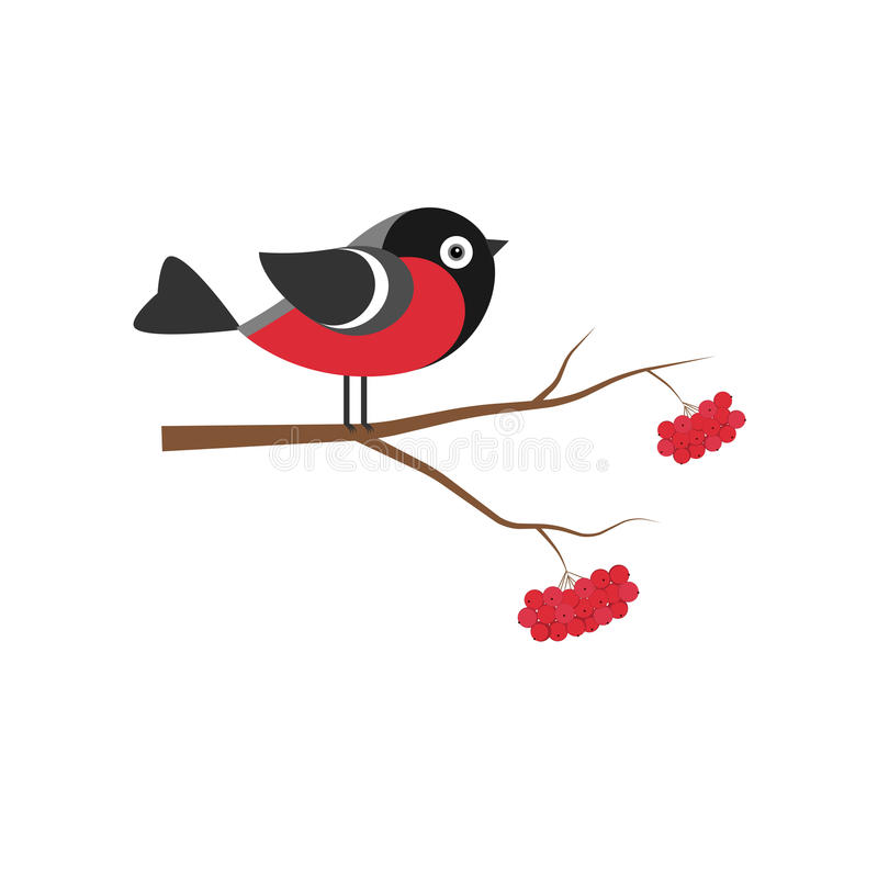 Bullfinch on the branch of mountain ash in flat royalty free illustration