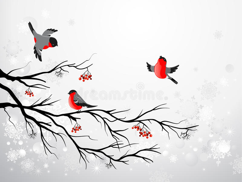 Bullfinch de branchement et d'oiseaux illustration libre de droits