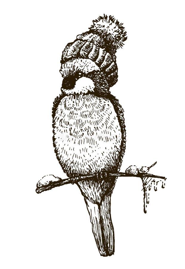 Bullfinch. Funny bird bullfinch in cap on white background. Sketch drawing stock illustration
