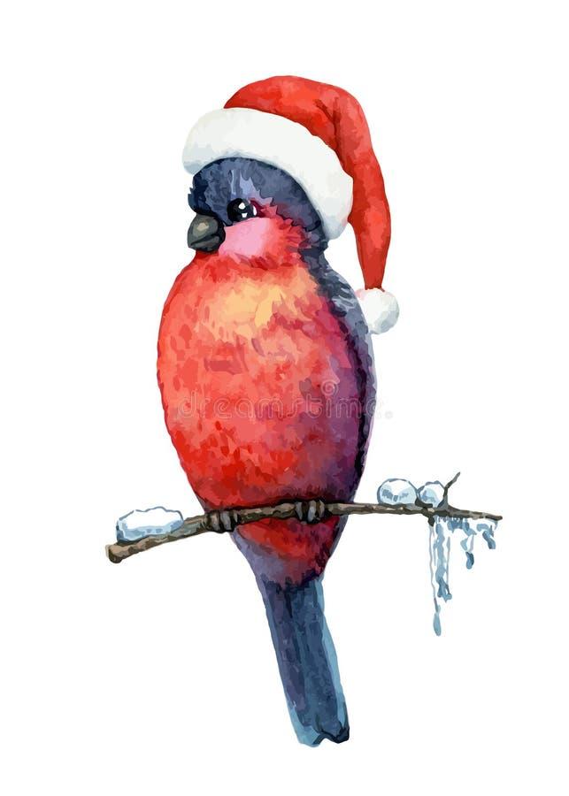 Bullfinch. Funny bird bullfinch in christmas cap on white background. Vector illustration vector illustration