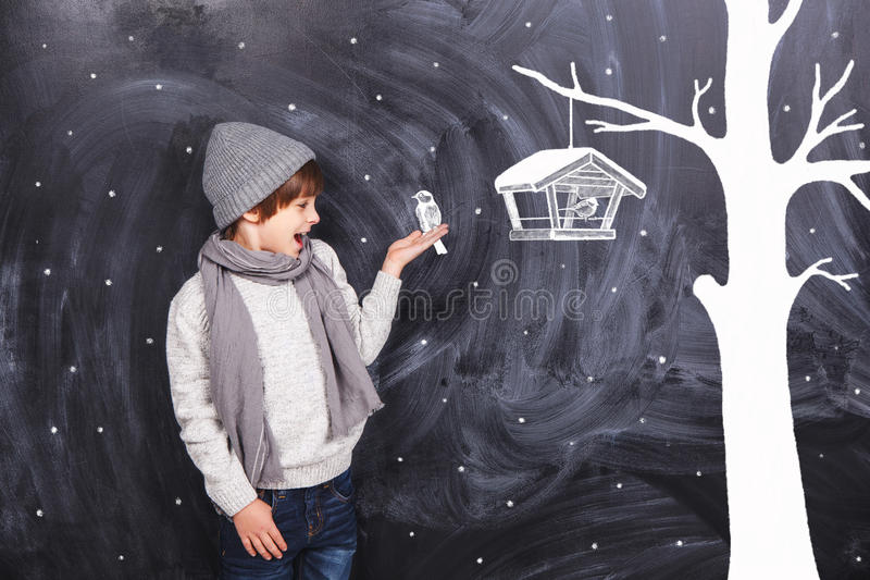 Bullfinch made of chalk on hand royalty free stock photos