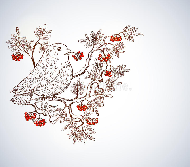 Download Bullfinch And Mountain Ash Background Stock Illustration - Image: 25093358