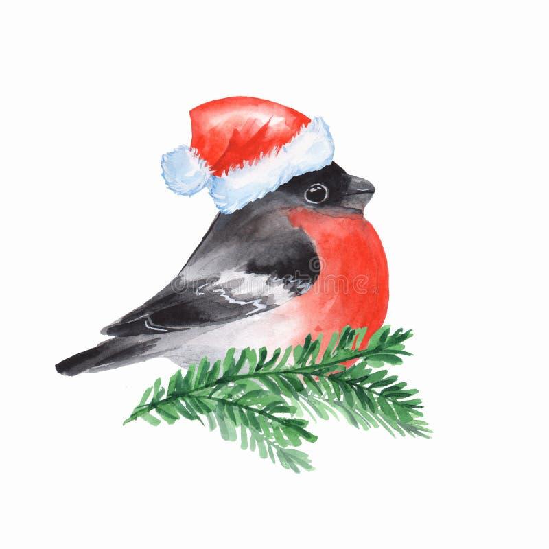 bullfinch Oiseau sur la branche illustration de vecteur