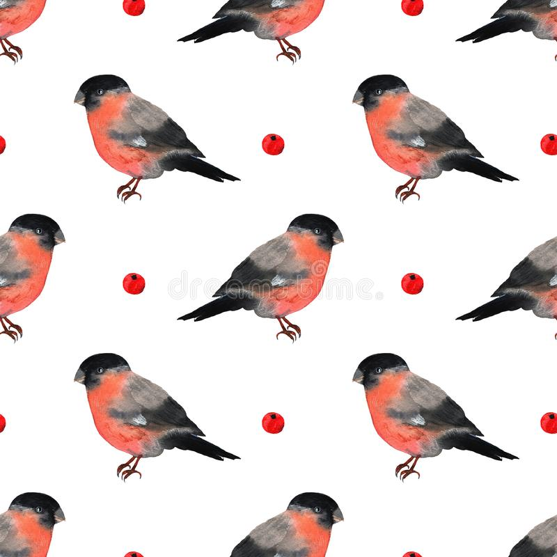Bullfinch red bird winter christmas in cartoon style. Winter holiday symbols in watercolor. Seamless pattern of wildlife royalty free stock photography