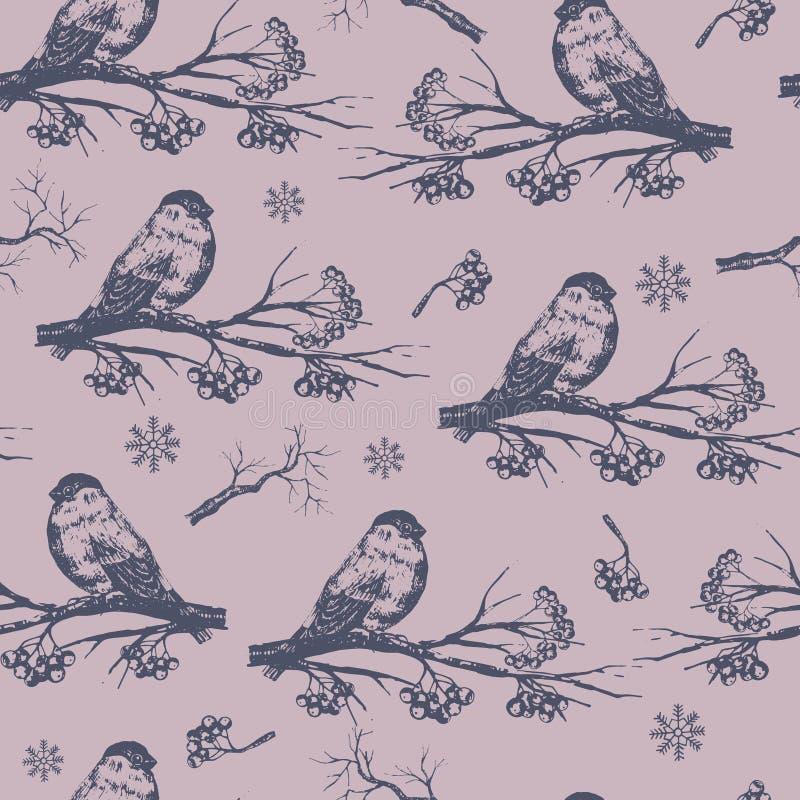 Bullfinch seamless pattern, hand drawn sketch. Vector bullfinch, tree branches, rowan berry seamless pattern, hand drawing sketch illustration in rustic retro vector illustration