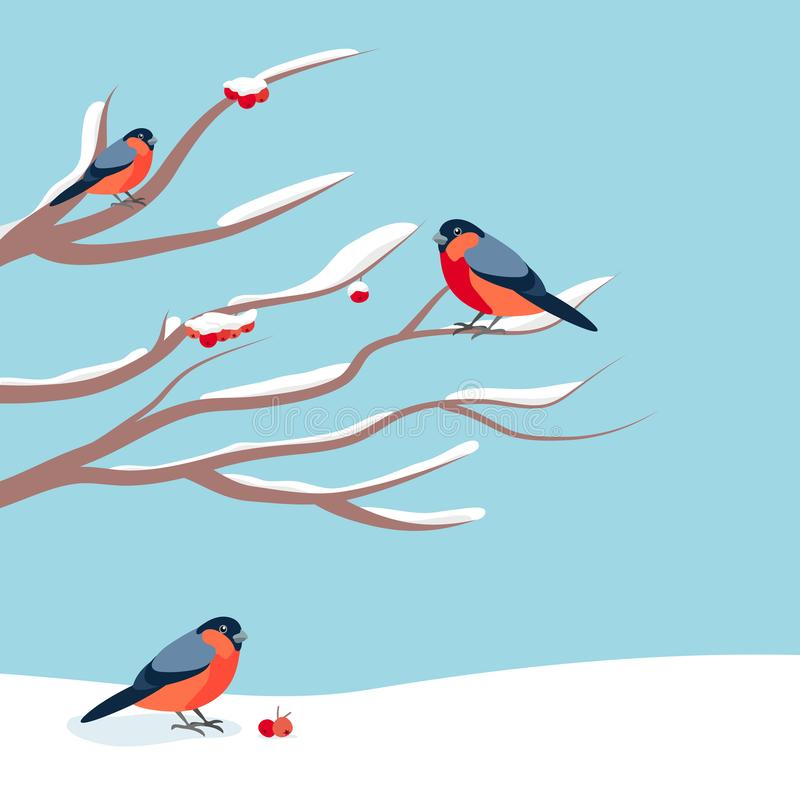 Bullfinch sitting on snow-covered branch of mountain ash. Christmas and New Year design greeting cards. stock illustration