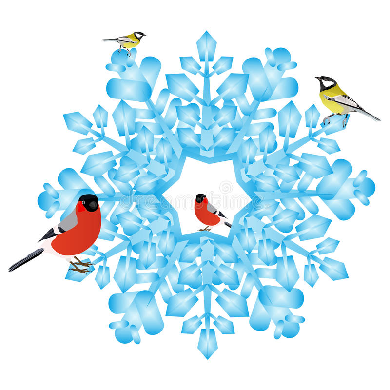 Download Bullfinch And Tits On A Snowflake Stock Vector - Illustration of drawing, snowflake: 26605654