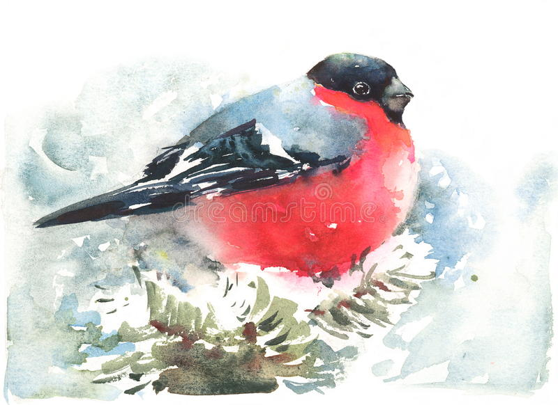 Bullfinch-Vogel-Aquarell-Winter-Illustration handgemalt stock abbildung