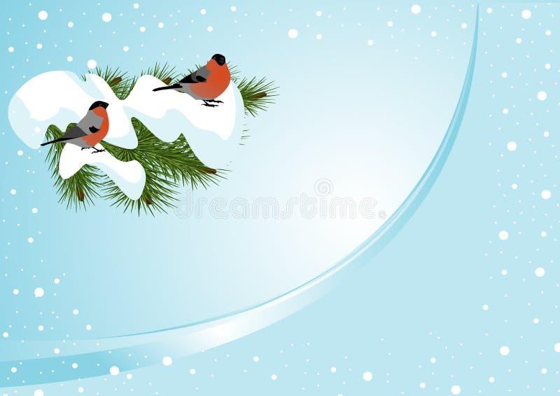 bullfinches δύο διανυσματική απεικόνιση