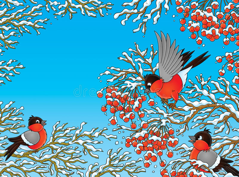 Bullfinches royalty illustrazione gratis