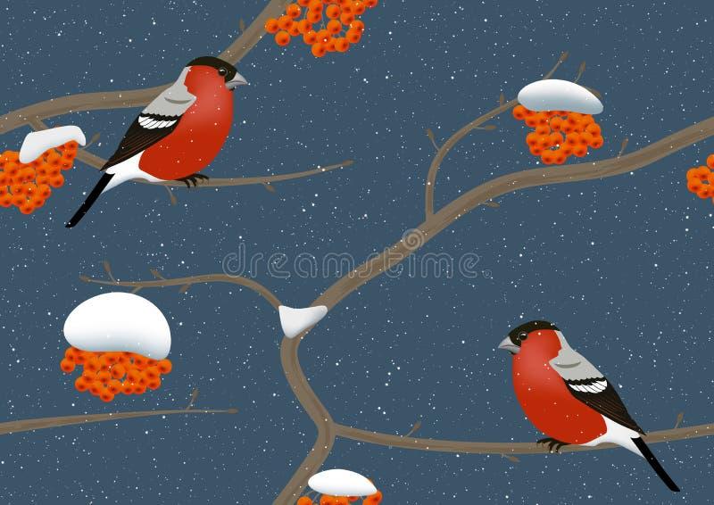 Bullfinches en árbol en invierno ilustración del vector