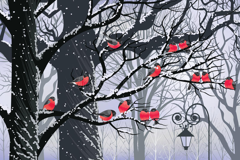 Bullfinches on trees vector illustration