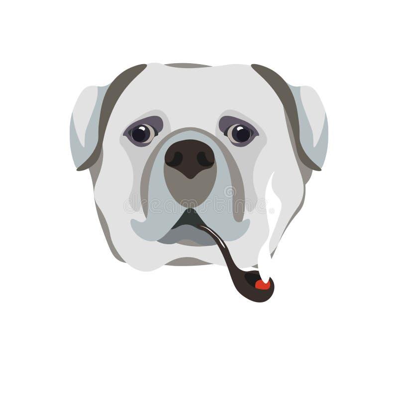 Bullmastiff与烟斗特写镜头画象的品种狗在白色 向量例证