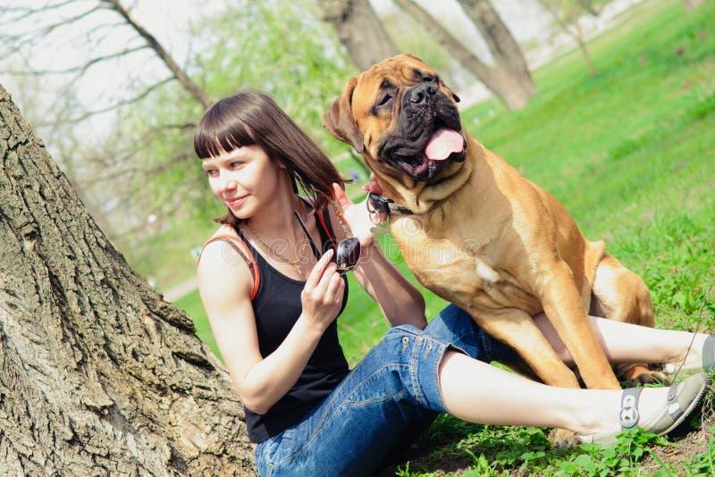 Bullmastiff de femme et de chien image libre de droits