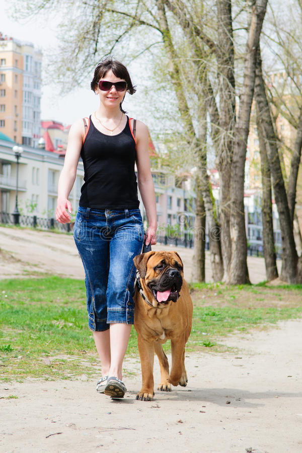 Bullmastiff de femme et de chien photos libres de droits