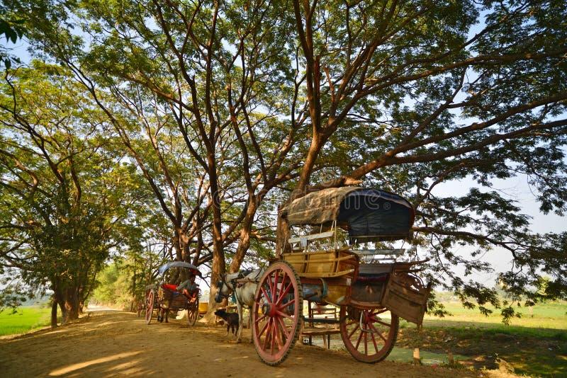 Countryside.Bagan royalty free stock photos