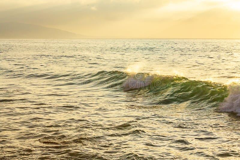 Bulnad för gul och grön våg till att skumma avbrottet med backspray på havvidd royaltyfri bild