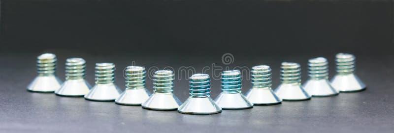 Download Bulten Förhäxer Plant Head Skruvrostfritt Stål För Håligheten Arkivfoto - Bild av stål, teknologi: 76701144