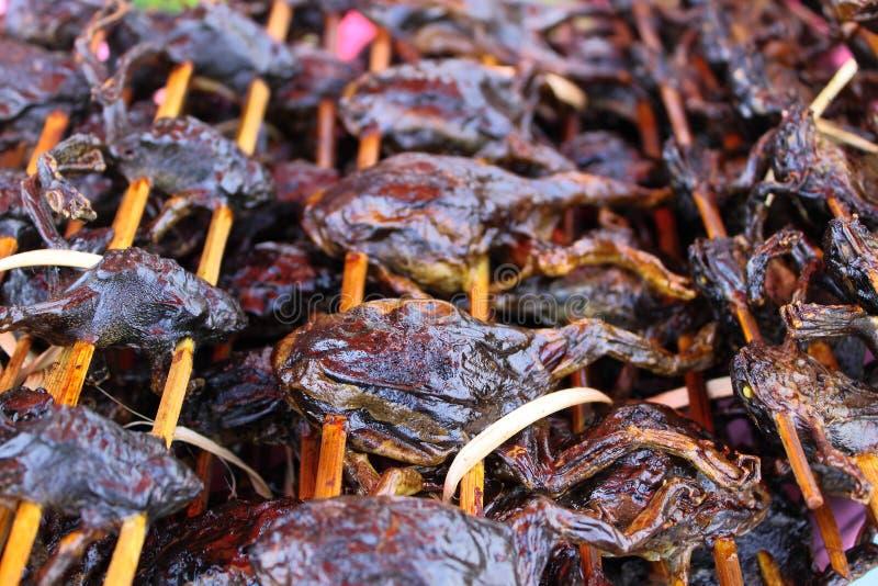 Bulto de la rana mugidora en la estufa para la comida más adelante imágenes de archivo libres de regalías