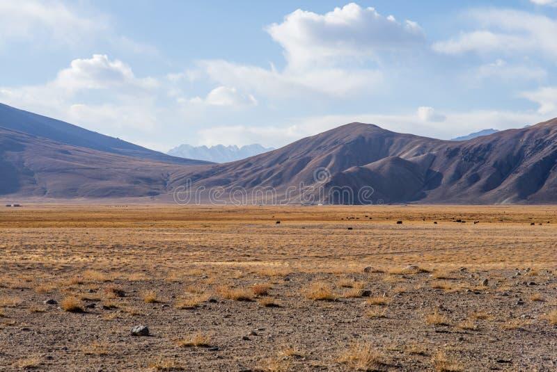 Bulunkul, Τατζικιστάν: Όμορφη άποψη της λίμνης Bulunkul Pamir στο Τατζικιστάν στοκ φωτογραφίες με δικαίωμα ελεύθερης χρήσης